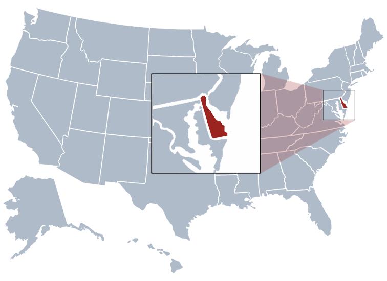 Delaware-sirket